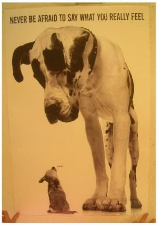 Great Dane And Chihuahua Poster Never Be Afraid To Say What You Really Feel
