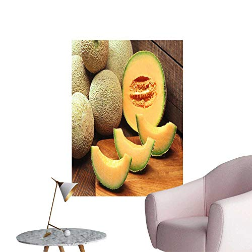 SeptSonne Vinyl Artwork Mature Hami Melon in Xinjiang Easy to Peel Easy to Stick,16