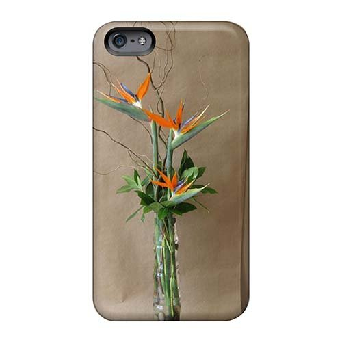Forever Collectibles Tropical Flowers Hard Snap-on Iphone 6 Plus Cases