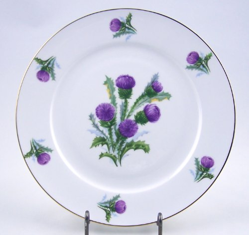 Porcelain Toile Plate (Fine English Bone China Salad Plate - Thistle Chintz - Springfield China - England)