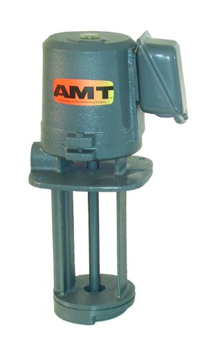 460v Pump - AMT Pump 5391-95 Immersion Coolant Pump, Cast Iron, 1/4 HP, 3 Phase, 230/460V, Curve B, 3/4