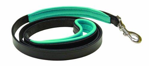 Perri's Padded Leather Dog Leash, Black/Turquoise, 5-Feet
