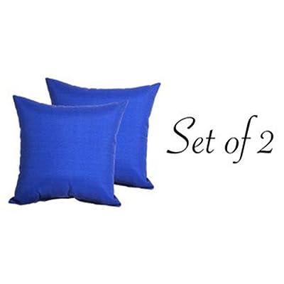 """Comfort Classics Inc. Indoor/Outdoor Blue Throw Pillow (Set of 2) 16"""" x 16"""" x 5"""" in Polyester : Garden & Outdoor"""