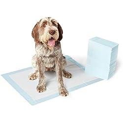 AmazonBasics Pet Training Pads, Extra-Large - 40-Count