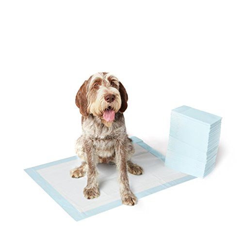 AmazonBasics Pet Training and Puppy Pads, Extra-Large – 40 Count