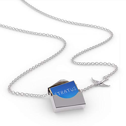 NEONBLOND Locket Necklace Stratus Clouds Fresh Air in a Silver Envelope