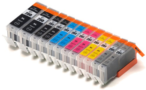 12 Pack Compatible Canon PGI-250 , CLI-251, Canon 251, Canon 250 2 Small Black, 2 Cyan, 2 Gray, 2 Magenta, 2 Yellow, 2 Big Black for use with Canon PIXMA iP7220, PIXMA MG5420, PIXMA MG5422, PIXMA MG6320, PIXMA MX722, PIXMA MX922. Ink Cartridges for inkjet