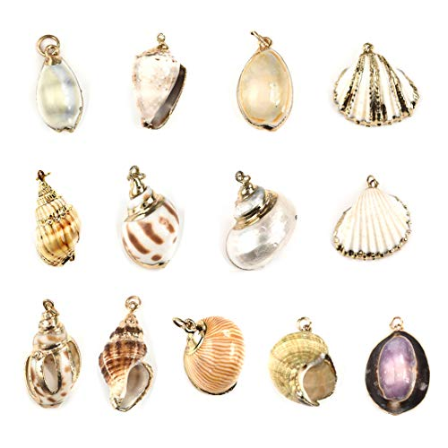 Buy shell pendant large