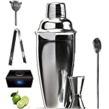 Cocktail Shaker Bar Set, 24 ounces Martini Kit with Double Jigger and Spoon plus Drink Recipes Booklet