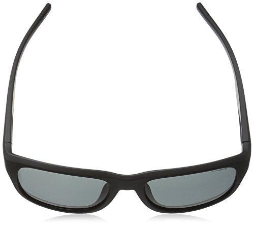 Matt S Grey Pz 3019 Sonnenbrille PLD Polaroid Black Negro AwpTO1q