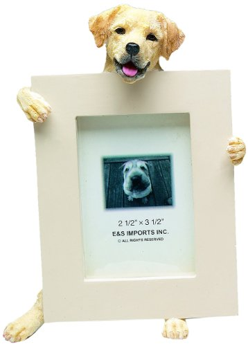 Yellow Lab Picture Frame Holds Your Favorite 2.5 by 3.5 Inch Photo, Hand Painted Realistic Looking Yellow Lab Stands 6 Inches Tall Holding Beautifully Crafted Frame, Unique and Special Yellow Lab Gifts for Yellow Lab Owners