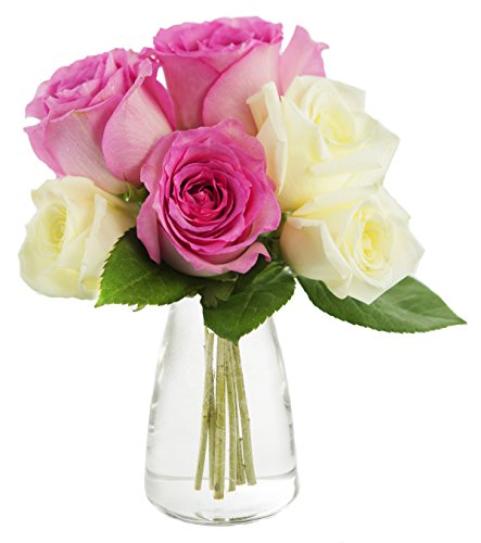 Kabloom Half Dozen Sweetie Pie Pink and White Roses