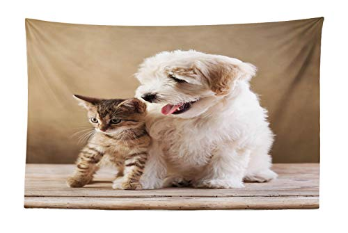 Ambesonne Animal Tapestry, Cute Baby Cat Kitten and Puppy Dog Best Friends Image Photo Artwork, Fabric Wall Hanging Decor for Bedroom Living Room Dorm, 45 W X 30 L inches, Sand Brown Cream and White