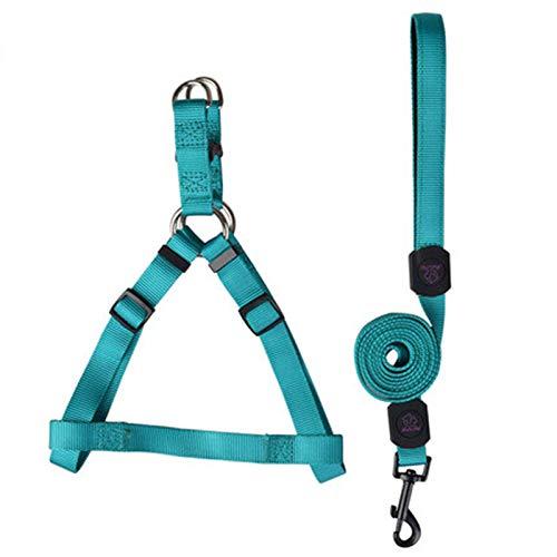 bluee L bluee L FFLSDR Dog Leash, Pet Chest Strap, Large medium small Dog Leash, Dog Strap, Hyena Rope (color   bluee, Size   L)