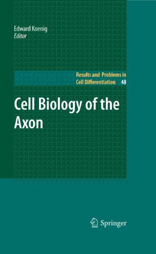 Cell Biology of the Axon: 48 (Results and Problems in Cell Differentiation) Pdf