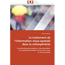 LE TRAITEMENT DE L  INFORMATION VISUO-SPATIAL