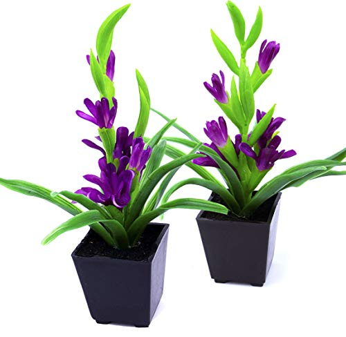 (MaxFlowery Set of 2, Artificial Vivid Tuberose Plant with Violet Blooms in Matt Black Pot, Duo Faux Potted Plants Greenery & Silk Flowers with Square Planter)