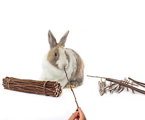 Image of Niteangel 2-Pack of Willow Mega Munch Sticks, Small Animal Chew Treat