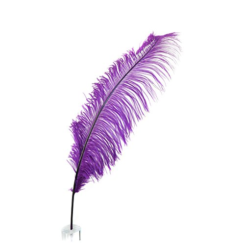 [Zucker Feather Products OS--PU Ostrich Feather Selected Spads, 18-24