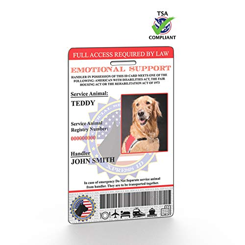 Most bought Dog ID Tags & Collar Accessories