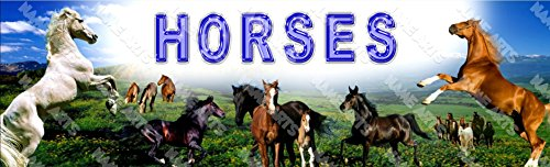Personalized / Customized Horses Name Poster Wall Decor Door Birthday Art Banner