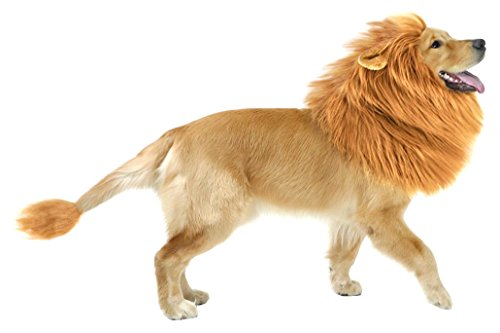 GABOSS Lion Mane Costume for Dog, Lion Wig for Dog Large Pet Halloween Festival Party Fancy Hair Dog Clothes with Ear and Tail, -
