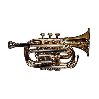 brass-pocket-trumpet
