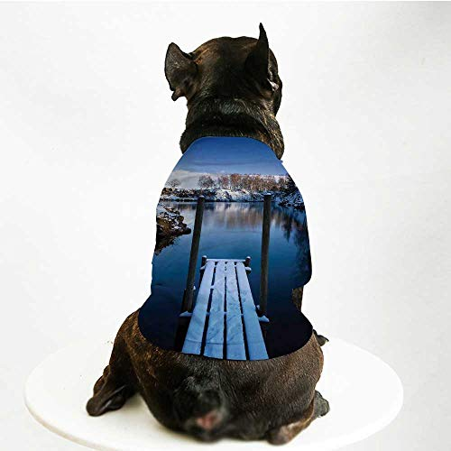 (YOLIYANA Art Fashion Pet Suit,Photo of Wooden Deck on The Shore of a Small Lake in Winter Sweden Frozen Northern for Cats and Dogs,M)