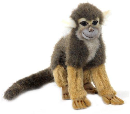 Squirrel Monkey 8
