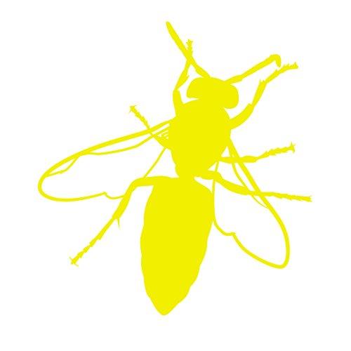 Yellow Jacket Bumble Bee - 5