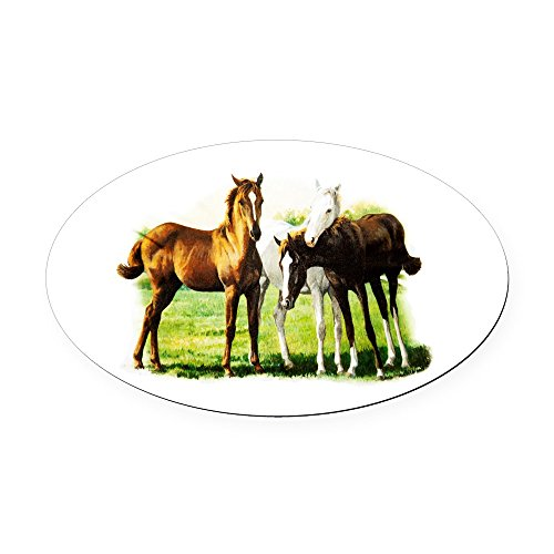 Oval Car Magnet Trio of ()
