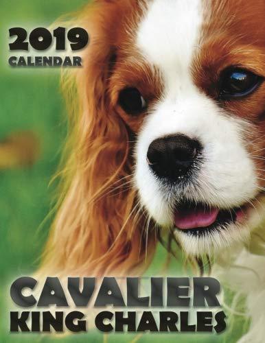 Cavalier King Charles 2019 Calendar