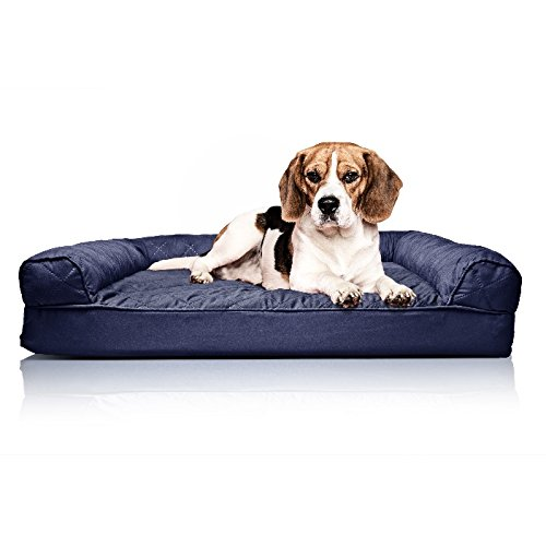 ZT Pets Doggie Bed Medium Orthopedic Washable - Therapeutic Pet Sofa Bolster Couch - Best Pup Comfort Bundle w Rope Toy (Blue)