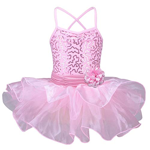 TFJH E Children Princess Party Costumes Flower Girls Ballet Leotard Dress Pink XXL -