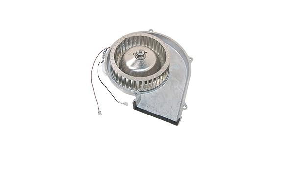 Genuine SMEG lavadora secadora Fan Motor 689250077: Amazon.es ...