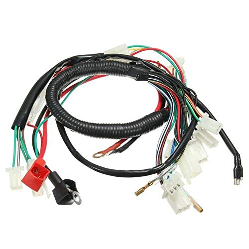 Wiring Harness Loom For Chinese Electric Start Quads: Amazon.co.uk: Electronics