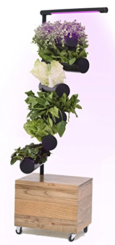 Vertical Garden with Full Spectrum Growth Lamp, Unique And Functional Decor or Gift