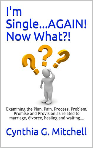 I'm Single...AGAIN! Now What?!: Examining the Plan, Pain, Process, Problem, Promise and Provision as related to marriage, divorce, healing and waiting.... (English Edition)