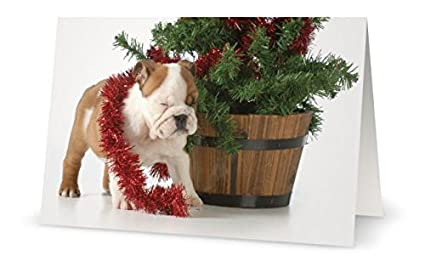bulldog depot holiday collection bulldog sparkles box set of 10 - Office Depot Christmas Cards