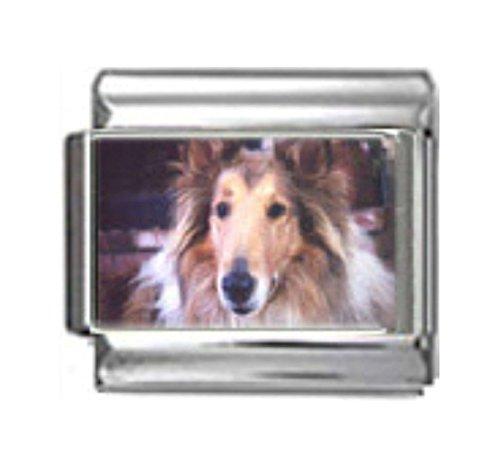 Stylysh Charms Collie Dog Photo Italian 9mm Link DG163