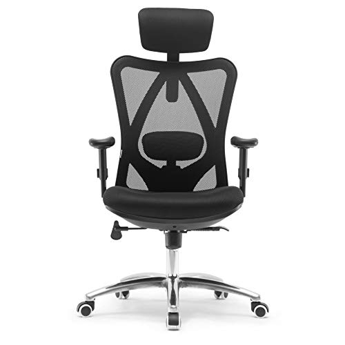 Sihoo Ergonomics Office Chair Computer Chair Desk Chair, Adjustable Headrests Chair Backrest and Armrest's Mesh Chair ()