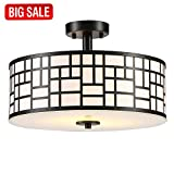 SOTTAE Elegant 2 Lights Glass Diffuser Black Livingroom Bedroom Flush Mount Ceiling Light, Ceiling Lamp Fixture(15.74″)