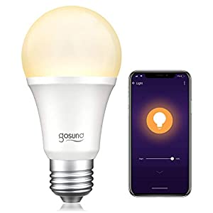 Best Epic Trends 41E45Y1-JXL._SS300_ Gosund Smart Light Bulb 75W Equivalent E26 8W Works with Alexa Google Home A19 LED Bulb Dimmable Bulb, 2.4Ghz WiFi Only…
