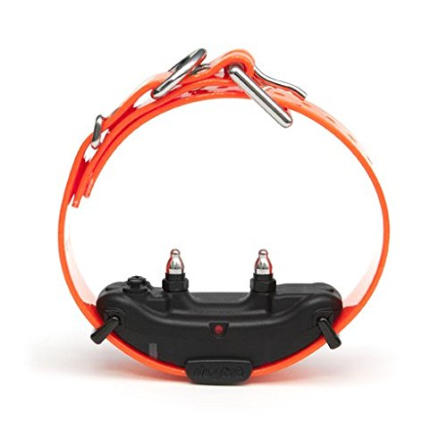 Additional Collar - Dogtra ARC Additional Receiver Collar, Orange