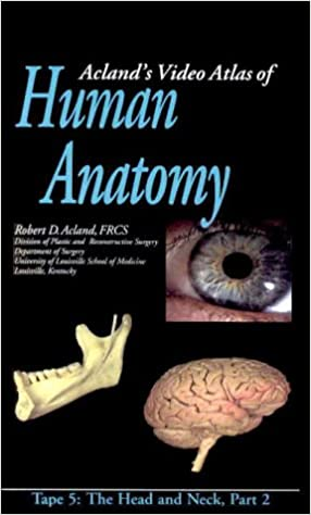 Buy Aclands Video Atlas Of Human Anatomy The Head And Neck Part