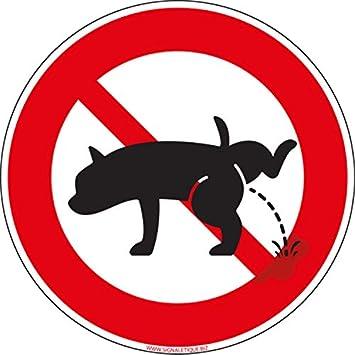 Pegatina adhesiva para perro prohibido orinar: Amazon.es ...