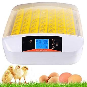 Egg Incubator Digital Automatic Poultry Hatch Egg Turning,Eggs Incubators Fertilized Chicken Duck Quail Bird Eggs for Hatching 32 Egg Incubator US Stock