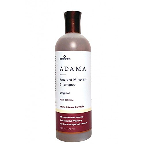 Price comparison product image Zion Health Adama Clay Minerals Shampoo, 16 Fluid Ounce
