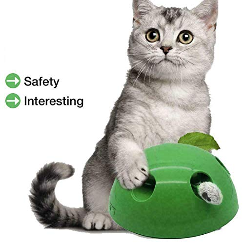 GETIEN Cat Toys Replacement Packs Including One Mouse One Fish and One Feather for Interactive Motion Cat Toys 6
