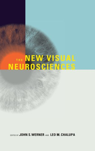 The New Visual Neurosciences (MIT Press)